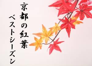 京都の紅葉のベストシーズン