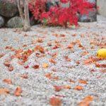 京都の清水寺ライトアップ2015~時間や駐車場,混雑を確認~
