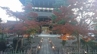 金塊光明寺の紅葉
