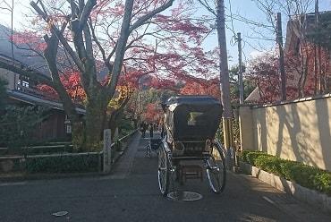 宝厳院の入り口付近の紅葉