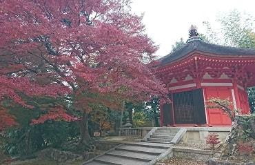 東福寺の愛染堂