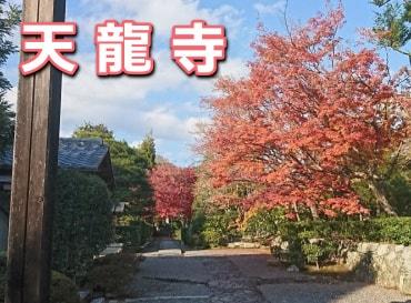 2017年の天龍寺の紅葉